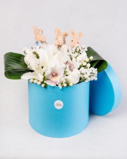 Kutuda Orkide ve Lilyum
